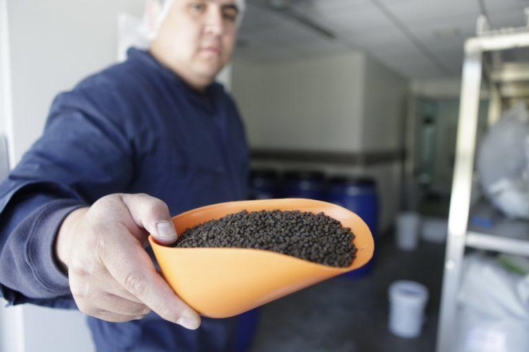 Certificaciones_Plantas-de-alimento-se-preparan-para-nuevo-estándar-ASC-768x512-1